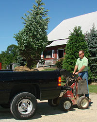 Bryan Keeton loading beautiful landscaping trees for delivery in the Morrow, Ohio area.